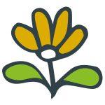illlustration: flower